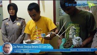 Dua Pemuda Ditangkap Bersama 300 Gram Ganja