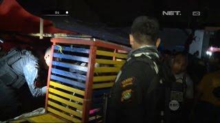 Pesta Miras di Pertunjukkan Musik Dangdut, Tim Jaguar Amankan Sejumlah Botol Miras - 86