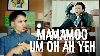 MAMAMOO - Um Oh Ah Yeh MV Reaction [HWASA-BI DOE]