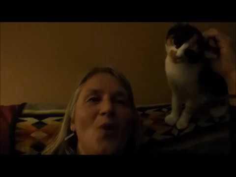 Xxx Mp4 Karen Singing Cameo By Clara Kitty 3gp Sex