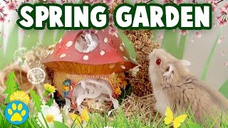 GARDEN Themed Hamster Cage + Cute Dwarf Hamster Exploring!