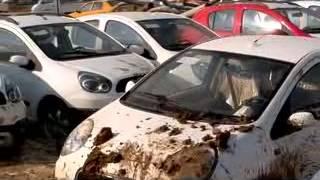 شيري جيلي كريت وول الاسكندرية مهزلة تسليم السيارات