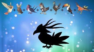 Pokemon Fusion Requests #139: Pidgeot, Noctowl, Swellow, Staraptor, Unfezant, Talonflame, Toucannon.