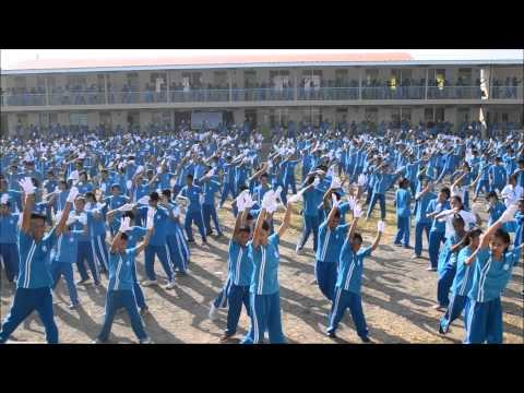 Nicolas L. Galvez Memorial National High School joins Nestle Wellness Dance Exercise