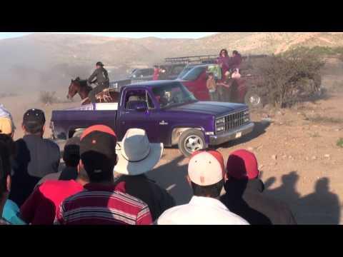 Carrera de caballo contra camioneta 2013