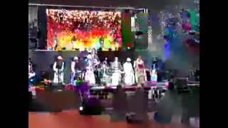 Shah Rukh,Dhoni, Gambhir, Deepika, Virat kohli dancing on lungi dance at IPL 7 opening ceremony