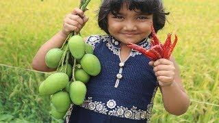 Yummy Kacha Aam Makha Recipe Village Style Farm Fresh Tasty Masala Raw Mango Village Food