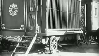 ভিডিওটি দেখে হাসতে হাসতে মরে গেলে কর্তৃপক্ষ দায়ী নয় : চার্লি চ্যাপলিন ( Charlie Chaplin )