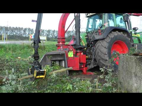 Forestry in Holland 2011