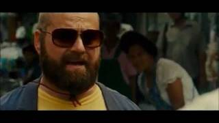 The Hangover Alans Funniest Moments