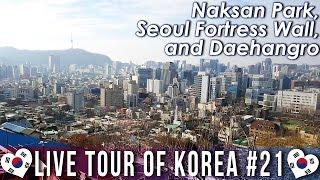 Naksan Park, Seoul Fortress Wall, and Daehangro - 🇰🇷 LIVE TOUR OF KOREA #21