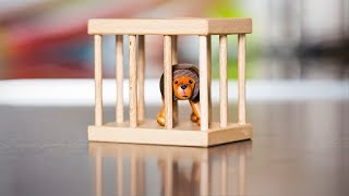 The Lion in the Cage - Set him free!