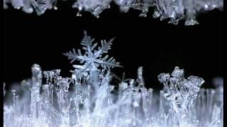 SNOWFORMS -  R. Murray Schafer