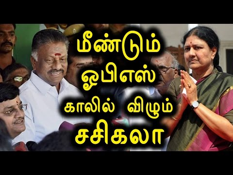 ADMK Forgive O.P.S and Deepa Says 'Thangatamil Selvan'- Oneindia Tamil
