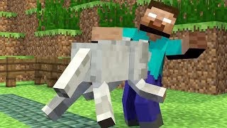 Monster School: Girls vs Boys Brave - Weapons - Farming  Challenge - Minecraft Animation