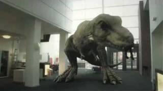 T. Rex In The Atrium (2010)