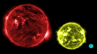 Top 10 Largest Stars Ever Discovered