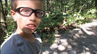 HIKING TO SEE NEW YORK CITY AS A KID