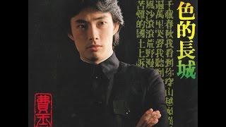 費玉清 - 又見柳葉青 (1981)