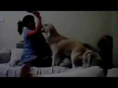 Xxx Mp4 Anne çocuğu Dövüyor Köpek Kurtarıyor 3gp Sex