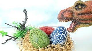 T Rex Attack Dinosaur Eggs! 4D PUZZLE DINOSAUR SURPRISE TOYS! Dinosaur Toys for Kids. 공룡 알 부화 퍼즐