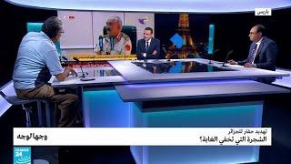 تهديد حفتر للجزائر: الشجرة التي تخفي الغابة؟