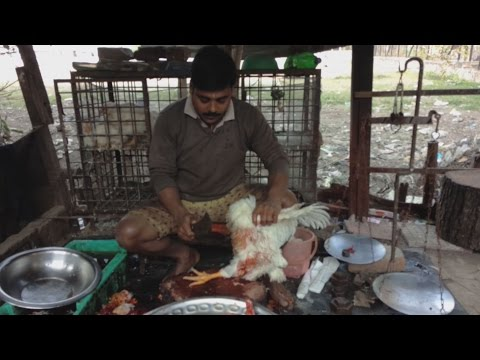 How to Cut Up a Whole Chicken in DESI Style - Live Indian Village Market