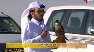 هدد فدخ شاهين الوسيل علي حمامه زاجل طير محمد الرميحي