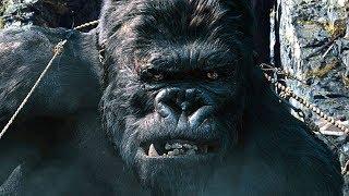 Capturing Kong Scene - King Kong (2005) Movie Clip HD