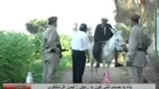 رخصه الحمار..مع تحيات منتدى جمعية ابريم