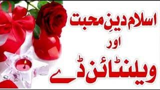 Valentine Day | Bayan by Saqib Raza Mustafai