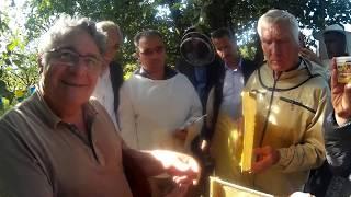 Turkish Beekeepers Visited Apiary of Vasyl Priyatelenko, Ukrainian Beekeeper