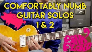 Comfortably Numb - Guitar Solos - Cover - Pink Floyd - Gibson Les Paul Standard