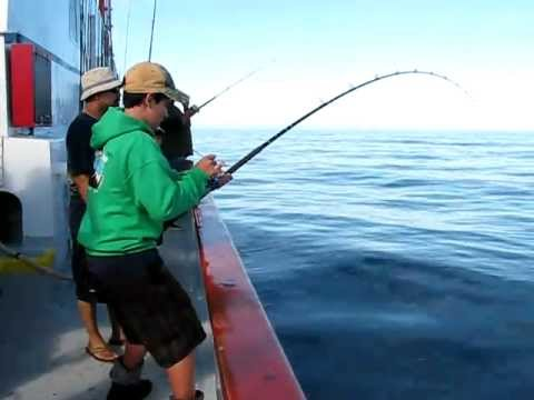 Boy Catches Giant Black Sea Bass with an Avet Reel