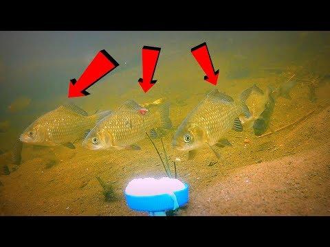 рыбная ловля на пробку видео