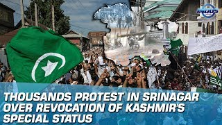 Thousands Protest In Srinagar Over Revocation of Kashmir's Special Status | Indus News