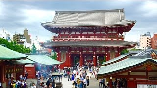 Top Things To Do In Tokyo | TRAVEL THERAPY