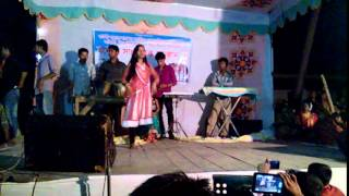 sarishabari programm