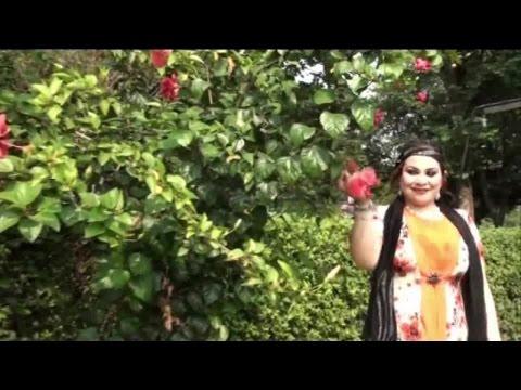Pashto New Female Singer Dilkash Tania New Song 2016 Za Da Gul Pa Shan