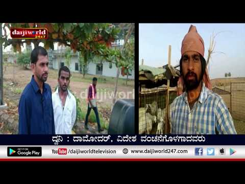 Free at last: Youths forced to work as shepherds in Saudi arrive in Mangaluru