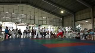 Sikaran knockout kick. Biakid kick