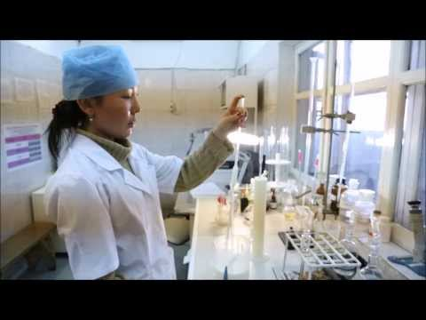Проверка молока на качество в лаборатории завода производителя