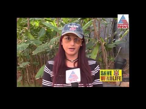 Xxx Mp4 Ragini Dwivedi Reaction On Save Tiger Campaign 3gp Sex
