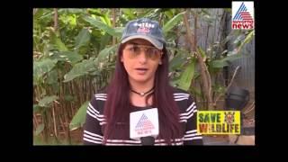 Ragini Dwivedi Reaction On Save Tiger Campaign