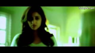 bawara kill/dill