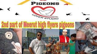Shariq bhai indian highflyers Loft 2nd part by kamal arora