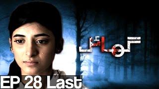 Ghayal - Episode 28 ( Last )| Aplus - Best Pakistani Dramas