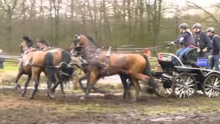 SANDMANN, Anna, GER, CAI2 Ermelo NED 2016, Horse Four in hand, Marathon Ob 4