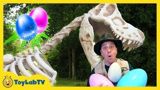 GIANT T-REX! Learn Colors for Children w/ Dinosaurs Egg Surprise Toys Opening, Family Fun Kids Video
