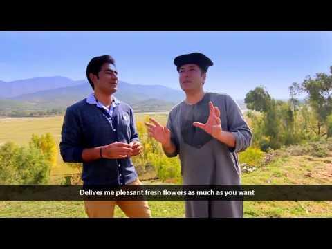 Pashto New HD Song Ka Lare Bajawar Ta 2015 By Bakhtiar Khattak